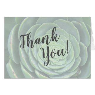 Obrigado do Succulent você cartões