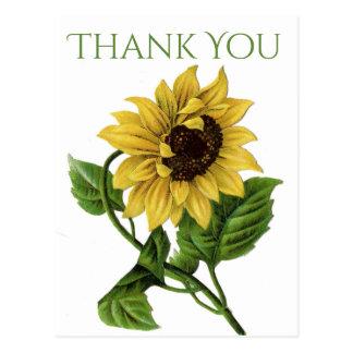 Obrigado floral do vintage você amarela flores do cartão postal