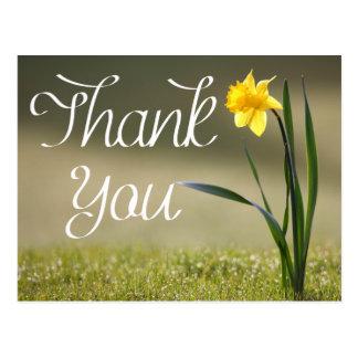 Obrigado floral você amarela a flor do Daffodil Cartão Postal
