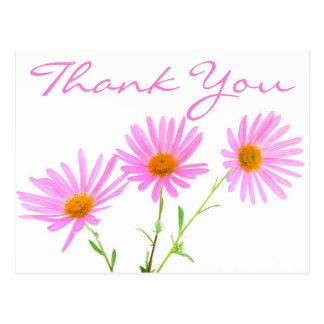 Obrigado floral você pica flores da margarida da cartão postal