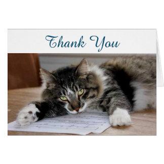 Obrigado musical do gato você cartão de nota