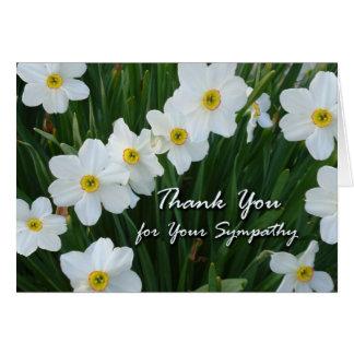 Obrigado para a simpatia, flores do narciso cartão comemorativo