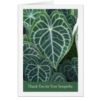 Obrigado para o cartão de simpatia