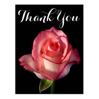 Obrigado preto cor-de-rosa cor-de-rosa da flor cartão postal