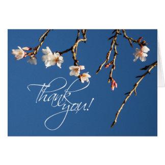 Obrigado que da flor de cerejeira você nota cartoes