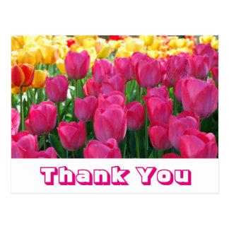 Obrigado que floral você amarela & pica flores da cartão postal