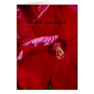 Obrigado senhor cartão comemorativo
