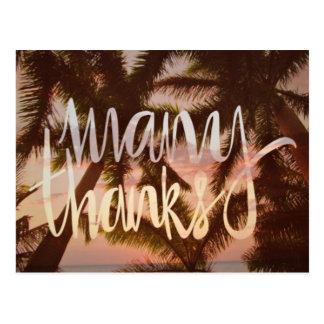 Obrigado tropical da palmeira você cartões