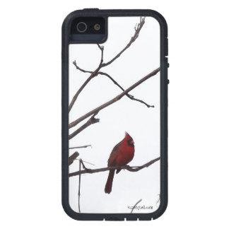 Observando o cardeal capa para iPhone 5