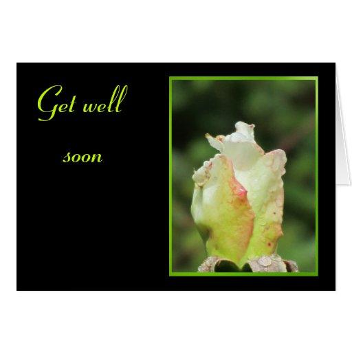 Obtenha a flor logo verde boa cartões