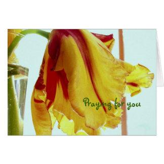 Obtenha o cartão bom da oração