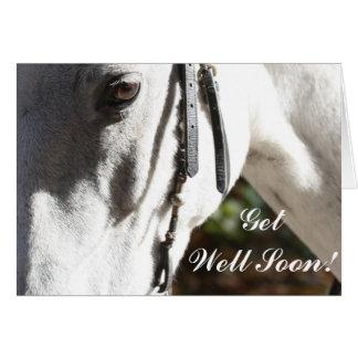 Obtenha o cartão bom do cavalo logo branco
