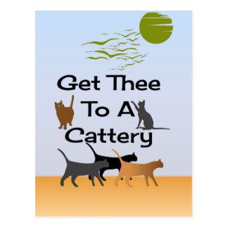 Obtenha Thee a um cartão do Cattery
