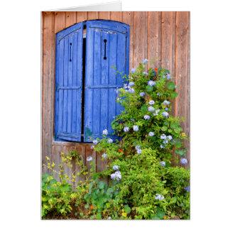 Obturadores e flores azuis cartão