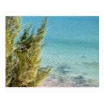 Oceano Cartão Postal