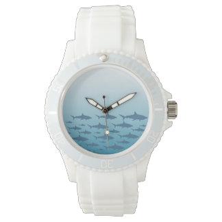 Oceano do relógio dos tubarões