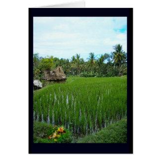 Oferecimento religioso, Ubud Bali Cartão De Nota
