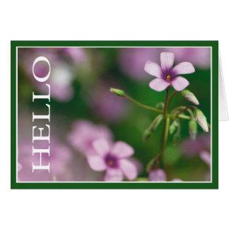 Olá! - cartão cor-de-rosa da azeda de madeira