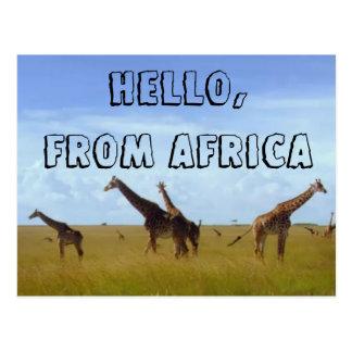 Olá! com amor do cartão de África Hakuna Matata Cartão Postal