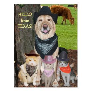 Olá! de Texas! Cartão Postal