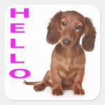 Olá! etiqueta/etiqueta do cão de filhote de cachor adesivo