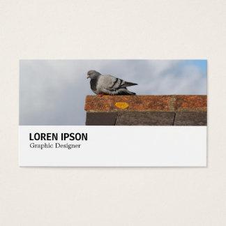 Olá!-Phi - 0369 - pombo do bom dia Cartão De Visitas