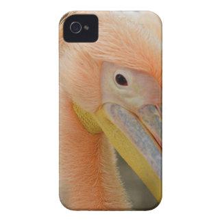 Olhando o caixa de Blackberry do pelicano Capinha iPhone 4