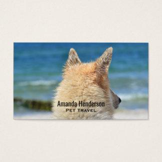 Olhares do cão de german shepherd para fora para a cartão de visitas