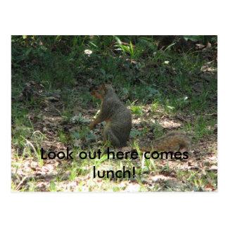 Olhe para fora vem aqui almoço! cartão postal