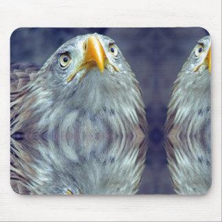 Olho de Eagle mau Mousepad