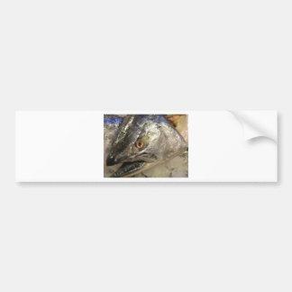 Olho de peixes adesivo para carro