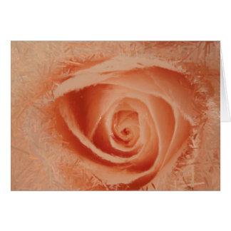 Olho do cartão do rosa