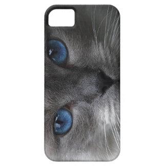 Olhos azuis capas para iPhone 5