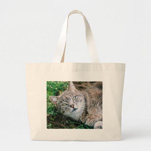 Olhos de gato bolsa para compras