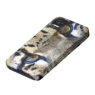 Olhos de um leopardo nublado capas para iPhone 4 Case-Mate