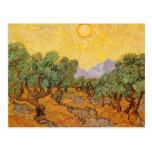Oliveiras, céu amarelo e Sun, Vincent van Gogh Cartões Postais