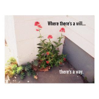 Onde há um cartão   da flor da vontade inspira
