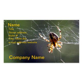 Ônibus. Cartão - aranha na Web Modelos Cartao De Visita