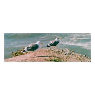 Ônibus. cartão - gaivotas no penhasco cartão de visita skinny