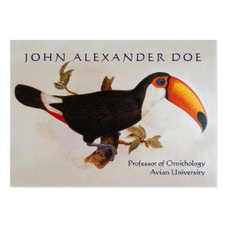Onithologist - professor da ornitologia - frente e cartão de visita grande