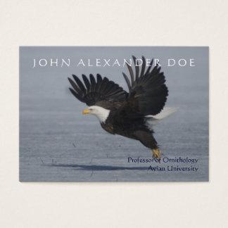 Onithologist - professor da ornitologia - frente e cartão de visitas