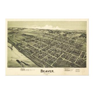 Opinião aérea o castor Pensilvânia (1900)