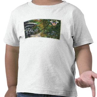 Opinião da caminhada do namorico da rocha de beijo tshirts