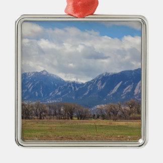 Opinião de cão de pradaria de Boulder Colorado Ornamento De Metal