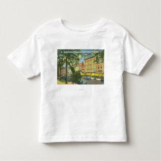 Opinião do patamar do hotel dos E.U. da rua Camisetas