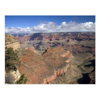 Opinião sul do Grand Canyon, arizona da borda, Cartão Postal