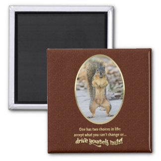 Oração da serenidade em resumo ímã quadrado
