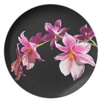 Orchid. cor-de-rosa louça de jantar
