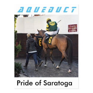Orgulho de Saratoga Cartão Postal