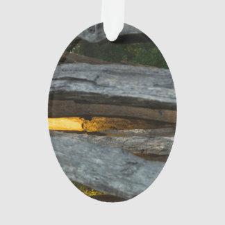Ornamento Abstrato do trilho rachado